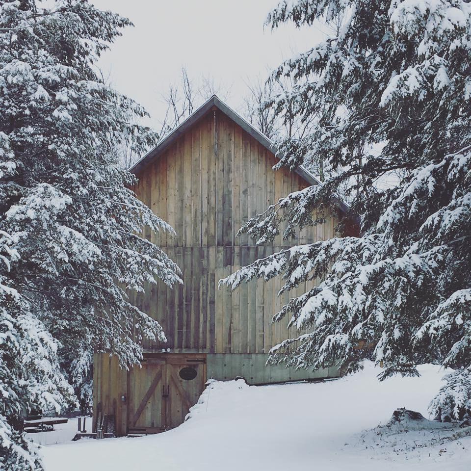 workshop-winter