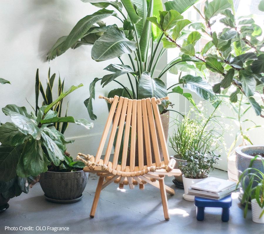 OLO-Fragrance-chair