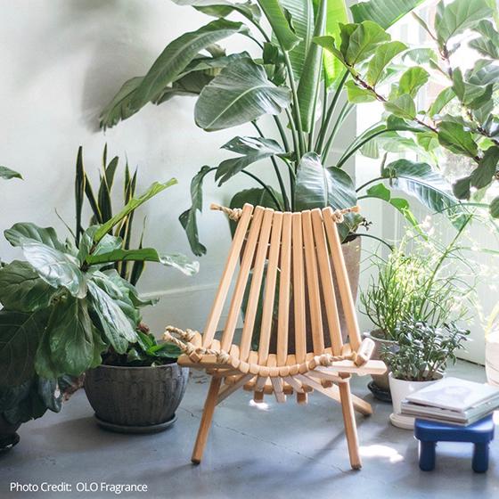 OLO-Fragrance-chair-pine